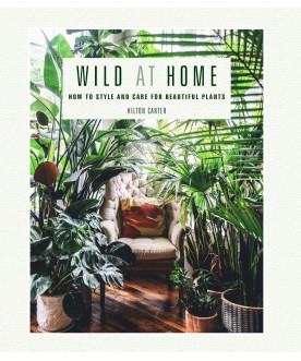 Album Wild at Home