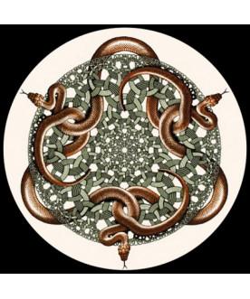 Przycisk do papieru, Escher