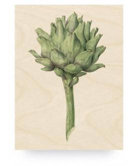 Obraz Botanical Artichoke,...
