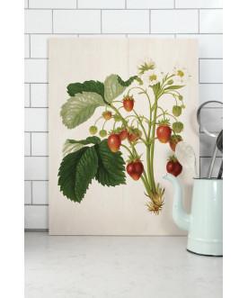 Obraz Botanical...