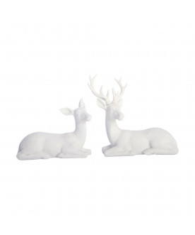 Para Deer Laying