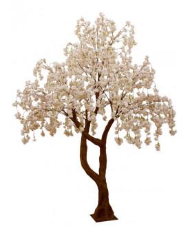 Drzewo Tree Blossom 1