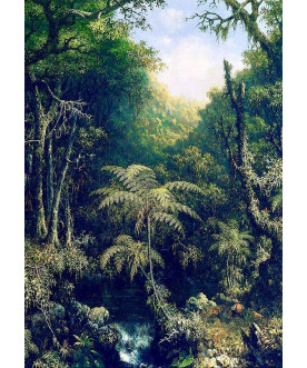 Jungle Scenery