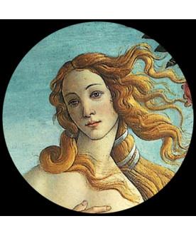 Przycisk do papieru Venus,...